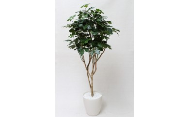 シェフレラ(造花)
