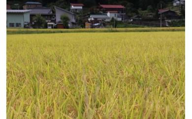 【0030-0034】平成29年産新米 食味コンクール受賞農家の特別栽培米コシヒカリ10kg