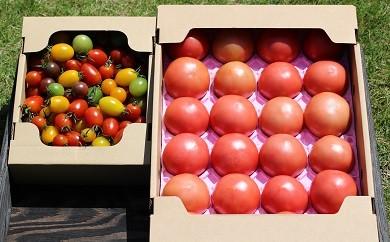 031 いわき産トマト詰合せボックス