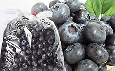 遠野で育った無農薬栽培の大粒冷凍ブルーベリー2Lサイズ・1㎏