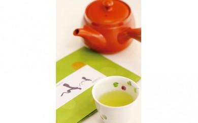 [№5903-0007]日本茶「てくてく」 ・急須 セット