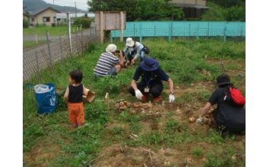 【P020】七ふしぎ農場体験(1品)G【10000pt】