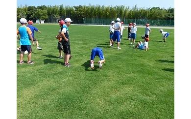 鹿島アントラーズ練習場で使用の芝生 50㎡