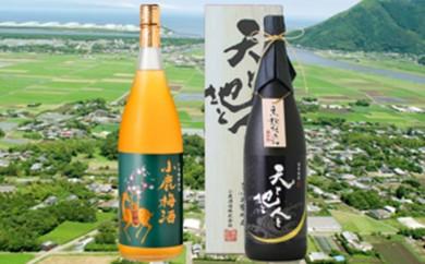 [№5750-0095]薩摩焼酎「天と地と人と」と小鹿梅酒の2本セット