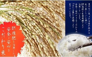 [新米]A-28「民話の里 ほたる舞®」ひとめぼれ(玄米)5kg