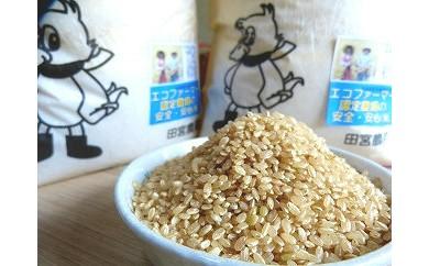 愛鴨米〈玄米〉3kg×2