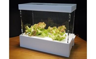 007-003 インテリア風小型水耕栽培装置