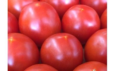 GB-5◆高知県安田町から愛情たっぷり新鮮トマト(2kg)
