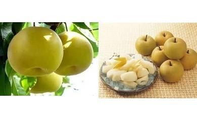 A みよし産の梨(※期間限定)