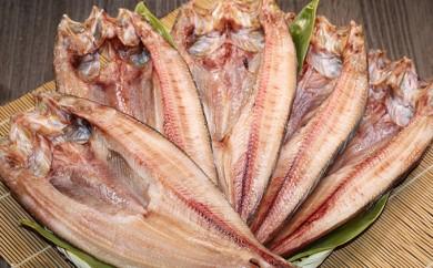 [№5742-0157]北の魚味・ほっけ三昧