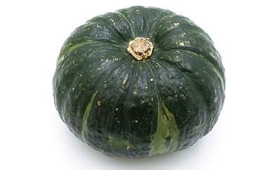 【E042】エコファーマー認定農場  「恵みや」 豊浦産 味平かぼちゃ約10kg【75pt】