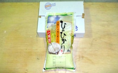 [№5661-0060]奈良県産「ひのひかり」 10kg+3kg