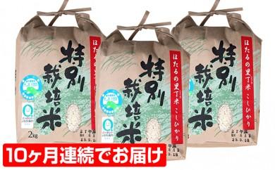 [№5884-0082]ホタルと共生のホタルの里丁米コシヒカリ6kg 10ヶ月連続お届け