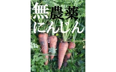 M12 【先行募集 平成30年1月発送開始】生で食べてもあま~い 無農薬で育てた土付きにんじん2kg