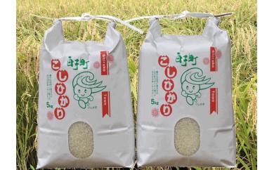 【平成29年産】白子産コシヒカリ10kg