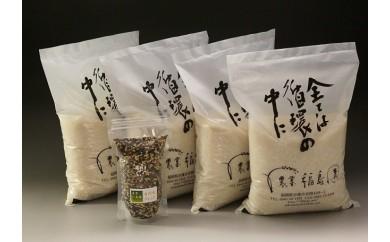 A475 農薬・化学肥料不使用のお米4種類食べ比べセット古代米を添えて