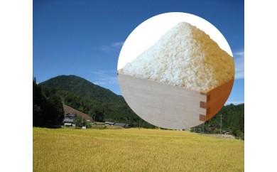 【予約受付】平成30年東白川村産コシヒカリ(白米)15㎏