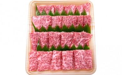 [№5787-0112]5等級 飛騨牛ロース又は肩ロース 焼肉用(約500g)