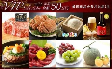 L33 豪華☆VIP Selection☆ 厳選品を毎月お届けします!
