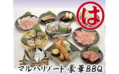 No.124 マルハリゾート 豪華BBQ4名様用お食事券