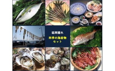 (D-3)延岡どれ四季の海産物セット