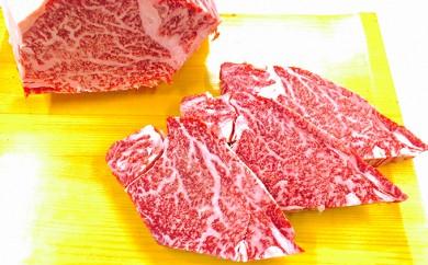 [№5682-0071]熊本県産 黒毛和牛ヒレステーキ『大容量100g×10!』