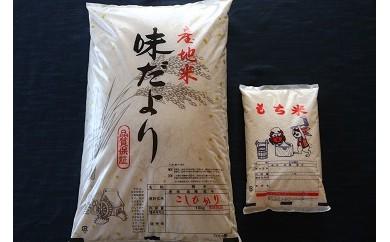 1-152 さくら農園 おいしいお米セット(コシヒカリ10kg、するがもち1kg)