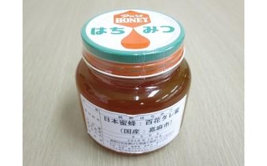 IG01-01 日本蜜蜂 百花タレ蜜  数量限定