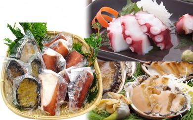 [№5650-0063]野村海産 大船渡産 刺身用あわび500g&煮タコ1kg