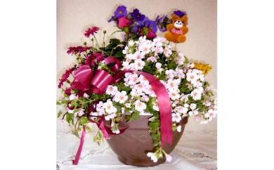 No.114 季節の花や観葉植物の寄せ植え アレンジメントA