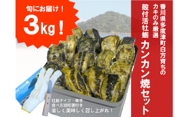 【H-1】(予約受付中:旬にお届け!2021年1月から期間限定出荷!)多度津白方 殻付活牡蛎カンカン焼セット3kg(加熱用)