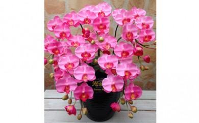 [№5809-0817]光触媒アートフラワー(造花) コチョウランS5本立 ピンク