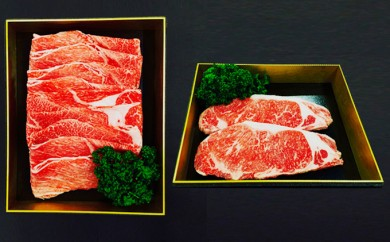 [№5682-0040]熊本県産赤牛ステーキ&すき焼きセット