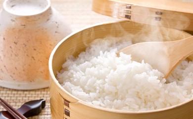 [№5644-0222]岐阜県揖斐郡産 味のいび米 はつしも 精米30kg
