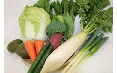 D1 新鮮!東松山市産季節の野菜と市内産加工品詰合せセット(2回お届け)