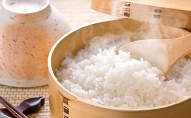 [№5905-0025]揖斐郡産 味のいび米 はつしも10kg×2
