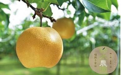 B217 鈴木農園 特撰甘果逸品 豊水梨5kg