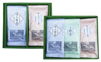B534 楠森堂 実生在来茶3種