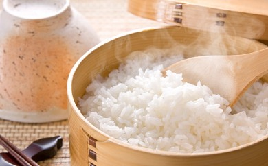 [№5905-0026]揖斐郡産 味のいび米 はつしも10kg×3