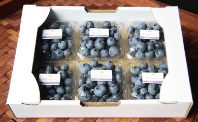 B337 里楽 生ブルーベリー3種食べ比べセット