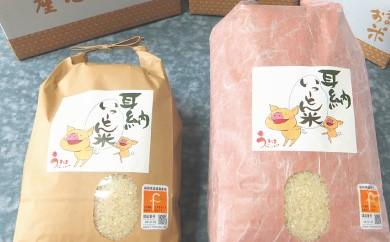 B477 みずほファーム 耳納いっ~とん米(にこまる)5kg