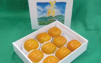 B314 JAにじ 太秋柿ビックリ玉3.5kg