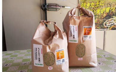 B449 白石(米)農園 ひのひかり 玄米3kg