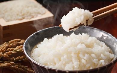ab01 【行田市】むかさ商店 行田のお米 忍城献上米10kg