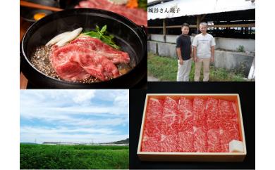 KBS-04 城谷牧場の神戸ビーフ(神戸牛)すきやき・しゃぶしゃぶ用500g