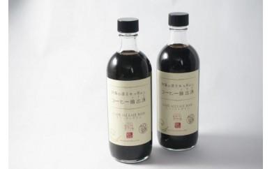 AM04 阿蘇の湧き水で煎れたコーヒー抽出液500ml×2【10000pt】