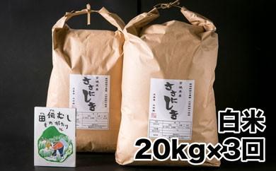 【定期配送】田伝むしのササニシキ白米20kgx3回(栽培期間中農薬・化学肥料不使用)