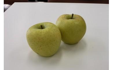 I-119-4 りんご シナノゴールド 秀5kg