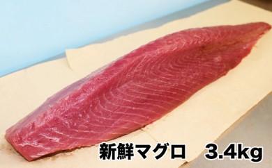 伊平屋島の若き漁師からお届け 新鮮マグロ 約3.4kg