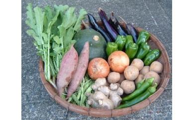 [№5716-0070]「エコの環」野菜の詰め合わせ